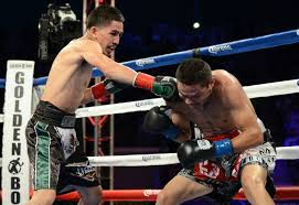 KO: Santa Cruz vs. Terrazas - Potshot Boxing