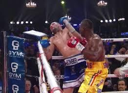 Stevenson vs. Bellew FOTY - Potshot Boxing
