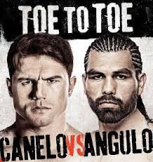 Canelo vs. Angulo Undercard - Potshot Boxing