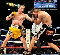Canelo vs. Angulo - Potshot Boxing