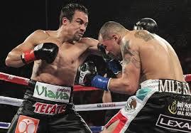 Marquez vs. Alvarado - Potshot Boxing