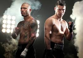 Miguel Cotto vs. Sergio Martinez Boxing Poll - Potshot Boxing