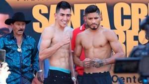 leo santa cruz vs. abnes mares boxing poll - Potshot Boxing