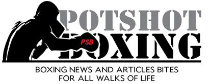 happy holidays - Potshot Boxing