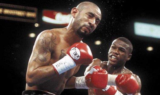 mayweather vs. corrales fotw - Potshot Boxing