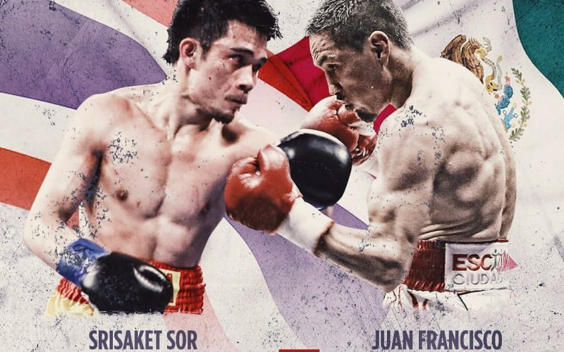 boxing schedule - Potshot Boxing